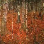 Klimtbirchforest
